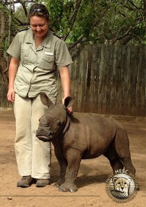 Matimba, saved at one month old after his mother was brutally killed by poachers.