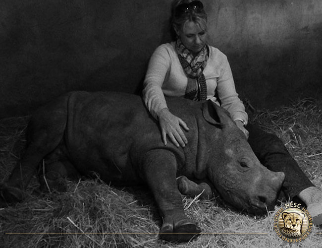 Gertjie, orphaned at 3 months old and the first rhino at HESC.